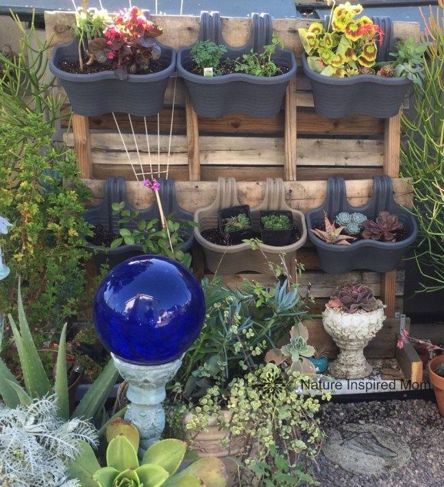 natureinspiredmom.gardenupdate3.jpg
